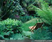Aménager un petit jardin : mode d'emploi