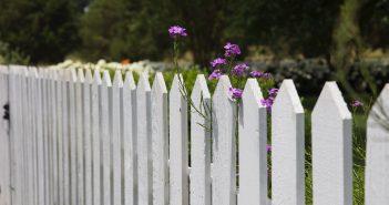 Comment décorer la clôture de mon jardin ?